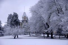 Frischer Schnee auf Campus stockbild