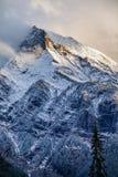 Frischer Schnee auf einer Bergspitze in kanadischen Rocky Mountains, britisches C lizenzfreie stockfotografie