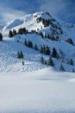 Frischer Schnee auf Ski-Steigung Stockfoto