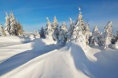 Frischer Schnee in den Bergen Stockfotos