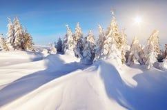 Frischer Schnee in den Bergen Lizenzfreie Stockbilder