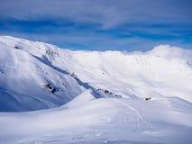 Frischer Schnee im hellen Sonnenlicht lizenzfreie stockfotos
