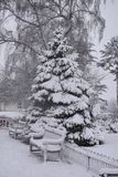 Frischer Schnee in Jephson-Gärten, Leamington-Badekurort, Großbritannien - Winterlandschaft, im Dezember 2017 Stockfotografie