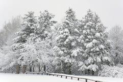 Frischer Schnee am Park Stockfoto