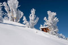 Frischer Schnee in Tahoe Stockbilder