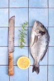 Frischer Seebrachsen mit Zitrone und Rosmarin Lizenzfreie Stockfotografie