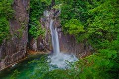 Frischer Sommer-Wasserfall Lizenzfreie Stockfotos