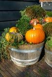 Frischer sortierter Kürbis und Kürbis im hölzernen Topf hergestellt vom alten Weinfaß ein Herbstgarten stockbilder