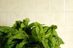 Frischer Spinat in der Küche lizenzfreies stockfoto