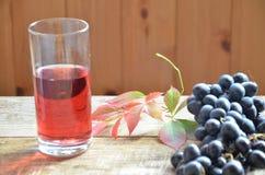 Frischer Traubensaft durch einige Weinreben Bürste von frischem organischem des Traubensafts der blauen Traube auf Holzoberfläche Stockbilder