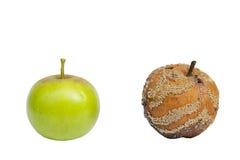 Frischer und fauler Apfel stockfoto