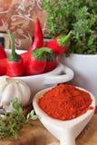 Frischer und getrockneter roter Paprika. Stockbilder