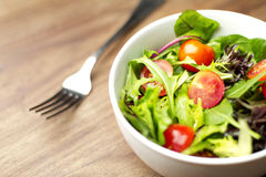 Frischer vibrierender Salat Lizenzfreie Stockfotos