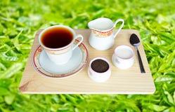 Frischer weltberühmter schwarzer Tee Ceylons Lizenzfreie Stockfotos