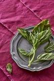 Frischer wohlriechender Basil Herb Picked von meinem organischen Herb Garden Oci Lizenzfreie Stockfotografie