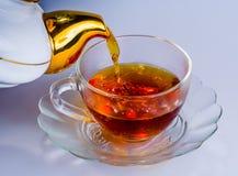 Frischer, wohlriechender Tee lizenzfreie stockfotos