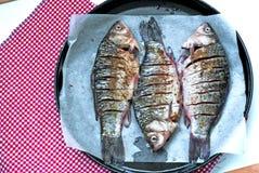 Frischerer Karpfen auf einem Backen, bevor Nahaufnahme gebacken wird Kleine Fische Stockbild