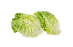 Frisches Baby Lattich (Kopfsalat) auf Weiß Lizenzfreie Stockfotografie