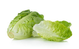 Frisches Baby Lattich (Kopfsalat) auf weißem Hintergrund Stockfoto