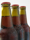 Frisches Bier Stockbilder
