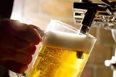 Frisches Bier lizenzfreie stockfotos