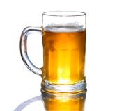 Frisches Bier des Bechers lokalisiert Lizenzfreie Stockfotografie