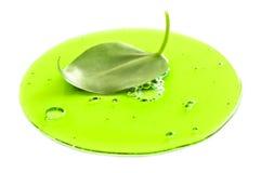 Frisches Blatt in der grünen Flüssigkeit lizenzfreies stockbild