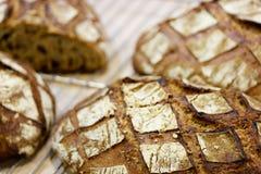 Frisches braunes Brot Stockfotos