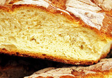 Frisches Brot lizenzfreies stockbild