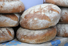 Frisches Brot Stockfoto