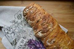 Frisches Brot ciabatta Stockfoto