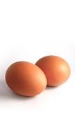 Frisches Ei getrennt Lizenzfreies Stockfoto