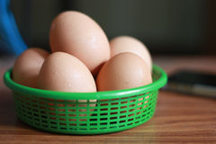 Frisches Ei im grünen Korb stockbilder