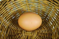 Frisches Ei im Korb Lizenzfreie Stockbilder
