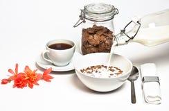 Frisches Frühstück Stockfotografie
