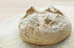Frisches französisches Brot Stockbilder