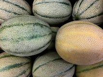 Frisches ganzes Cantalope Lizenzfreie Stockfotografie