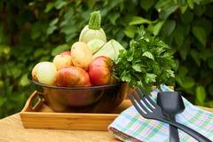 Frisches Gartengemüse und -kräuter mit Küchenmaterial auf Holztisch auf Garten backgraund stockbilder