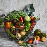 Frisches Gartengemüse - Brokkoli, Zucchini, Aubergine, Pfeffer, rote Rüben, Tomaten, Zwiebeln, Knoblauch - Weinlesemetallkorb Stockbild