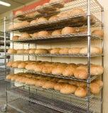 Frisches gebackenes Brot auf Zahnstange Lizenzfreies Stockfoto