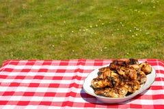 Frisches gegrilltes Hühnerfleisch auf Tabelle mit rotem kariertem tableclot stockfotografie