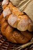Frisches geschmackvolles Brot (kalatches) schließen oben Stockfotografie