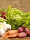 Frisches geschmackvolles Gemüse Lizenzfreie Stockbilder