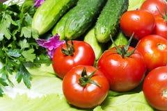 Frisches geschmackvolles Gemüse für das Kochen Stockbilder