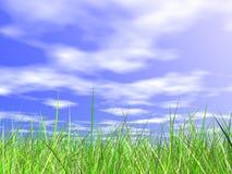 Frisches grünes Gras auf blauem sonnigem Himmelhintergrund Lizenzfreie Stockfotografie