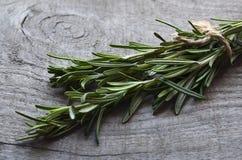 Frisches grünes Rosmarinkraut auf altem hölzernem Hintergrund +EPS Rosemary Ikone Rosemary springen auf einen Holztisch Lizenzfreie Stockbilder