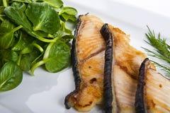 Frisches Haifischsteak mit Salat lizenzfreie stockbilder