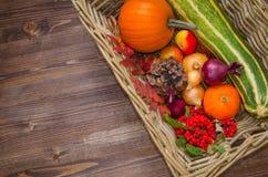 Frisches Herbstgemüse in einem Korb Lizenzfreies Stockbild