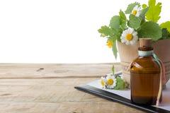Frisches Kraut und medizinisches Klemmbrett auf Holztisch Abbildung auf weißem Hintergrund Stockbild