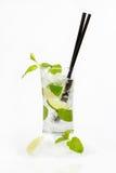 Frisches mojito Cocktail Lizenzfreies Stockbild
